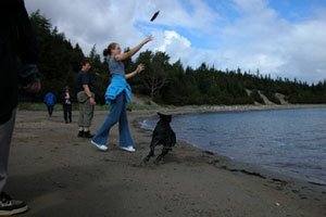Girl playing catch with a dog at Woody Island Resort